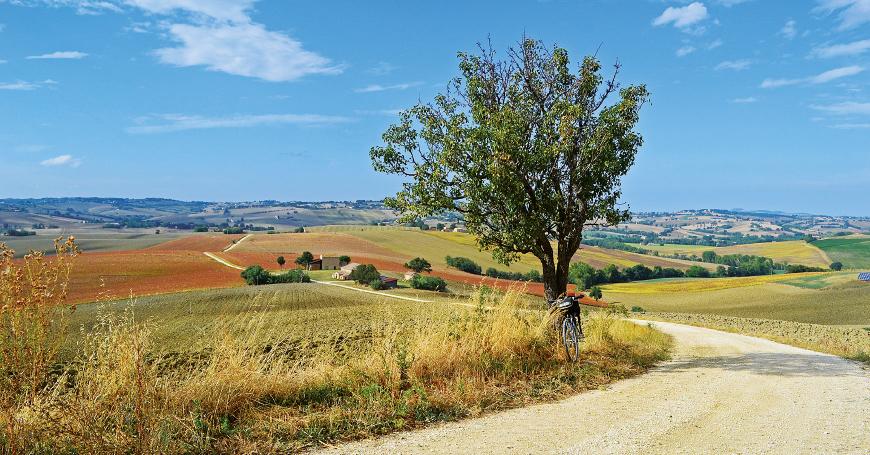 Camminatori in Italia: numeri e identikit